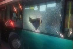 arabs stone bus