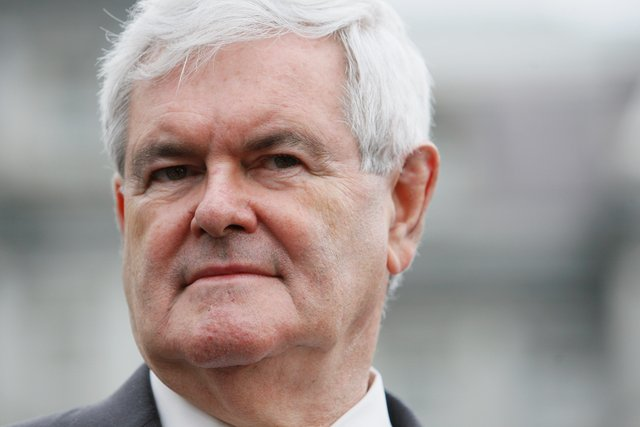 newt gingrich. hair newt gingrich. newt