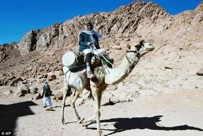 bedouin on camel