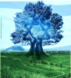 tree of zionism