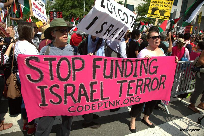 dc anti-israel protest